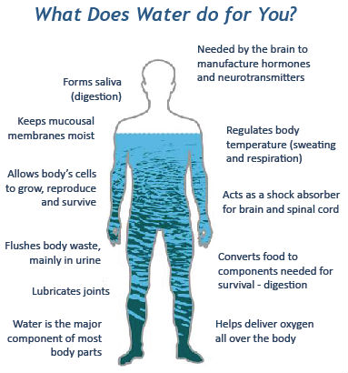 Benefits of water to human body