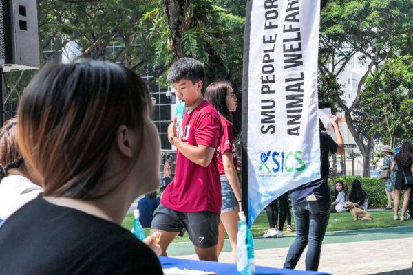 SMU PAW Animal Day 2019-13