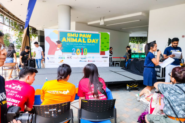 SMU PAW Animal Day 2019-2